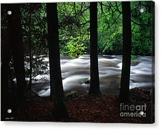 Smoky Mountain Stream #2  2009 Acrylic Print