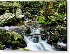 Smoky Mountain Stream 4 Acrylic Print by Mel Steinhauer