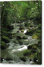 Smoky Mountain Stream Acrylic Print by Rita Mueller