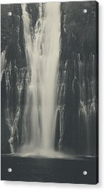 Smooth Acrylic Print by Laurie Search