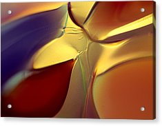 Smooth Moves Acrylic Print by Omaste Witkowski