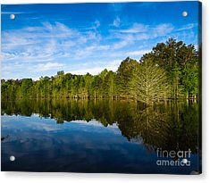 Smooth Reflection Acrylic Print by Ken Frischkorn