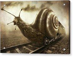 Snail Mail Acrylic Print