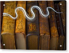 Snake And Antique Books Acrylic Print by Garry Gay