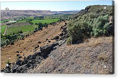 Snake River Agricultural Emerald Acrylic Print by Joel Deutsch