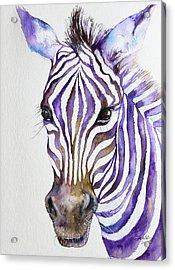 Snazzy_ Purple Stripes Acrylic Print