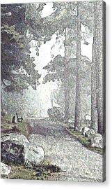 Snicket Fog Acrylic Print