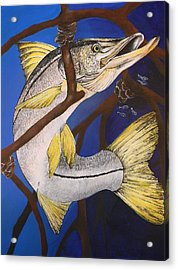 Snook Painting Acrylic Print by Lisa Bentley