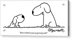 Dog Talks To Puppy About Being Cute Acrylic Print