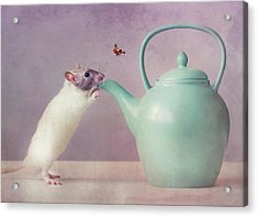 Snoozy  :) Acrylic Print by Ellen Van Deelen