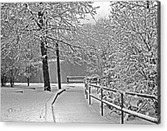 Acrylic Print featuring the photograph Snow Along The Path by Andy Lawless
