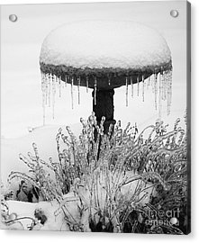 Snow And Ice Served-up Acrylic Print