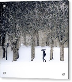 Woman With Umbrella Walking In Park Covered With Snow Acrylic Print by Aldona Pivoriene
