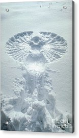 Snow Angel Acrylic Print by Bill Longcore
