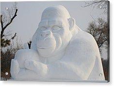 Snow Ape Acrylic Print by Brett Geyer
