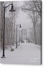Snow At Bulls Island - 05 Acrylic Print