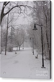 Snow At Bulls Island - 29 Acrylic Print