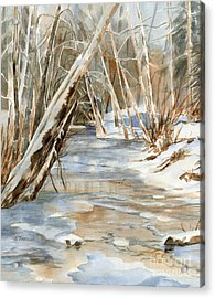 Snow At Cameron Creek Acrylic Print by Sharon Freeman
