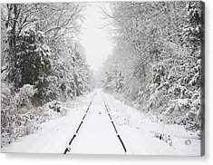 Snow Bound Acrylic Print by Nancy Edwards