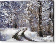 Snow Came Acrylic Print