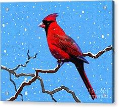 Snow Card Acrylic Print by Robert Foster
