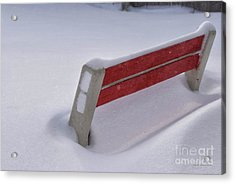 Snow Covered Bench Acrylic Print by Thomas Woolworth