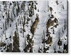 Snow-covered Canyon Walls In Yellowstone National Park Acrylic Print by Bruce Gourley