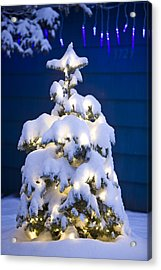 Snow Covered Christmas Tree With White Acrylic Print by Kevin Smith