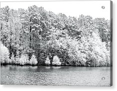 Snow Covered Acrylic Print