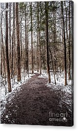Acrylic Print featuring the photograph Snow Covered Trail by Debbie Green