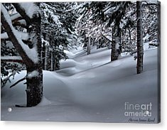 Snow Covered Trail Acrylic Print by Steven Reed