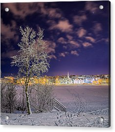 Snow Covered Trees And Frozen Pond Acrylic Print by Panoramic Images