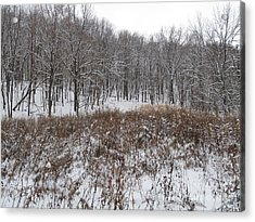 Snow Covered Woodland Acrylic Print