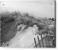 Snow Covered Sand Dunes Acrylic Print by Eunice Miller