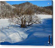Snow Creek Acrylic Print
