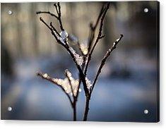 Acrylic Print featuring the photograph Snow Crystal Sunrise by Glenn DiPaola