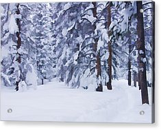 Snow-dappled Woods Acrylic Print