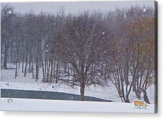 Snow Day Acrylic Print by Chris Berry