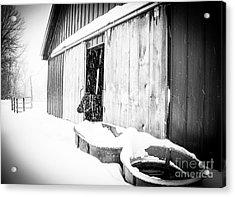 Snow Day Acrylic Print by Sue OConnor