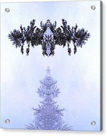 Snow Delivery Acrylic Print