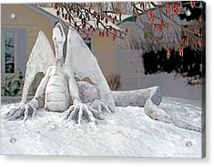 Snow Dragon 3 Acrylic Print by Terry Reynoldson