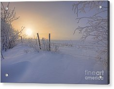 Snow Drifts And Barbed Wire Acrylic Print by Dan Jurak