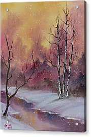 Winter Enchantment Acrylic Print by C Steele