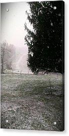 Snow Falling Acrylic Print by Nickaleen Neff