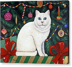 Snow Flake The Cat Acrylic Print by Linda Mears