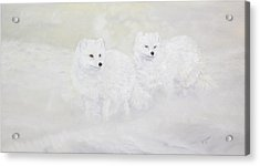 Snow Ghosts Of The North Acrylic Print by Johanna Lerwick