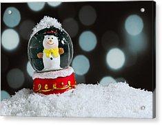 Snow Globe Acrylic Print by Carlos Caetano