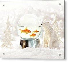Snow Globe In  Winter Scene Acrylic Print by Sandra Cunningham