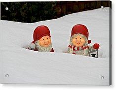 Snow Gnomes Acrylic Print by Odd Jeppesen