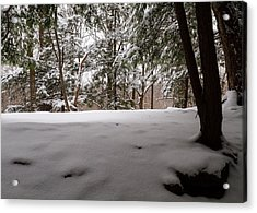 Snow In Shade  Acrylic Print by Tim Fitzwater